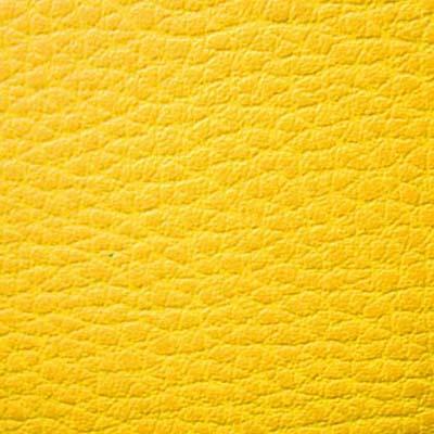 Скаден желтый
