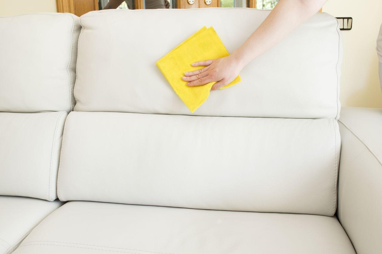 чистка дивана от шерсти животных